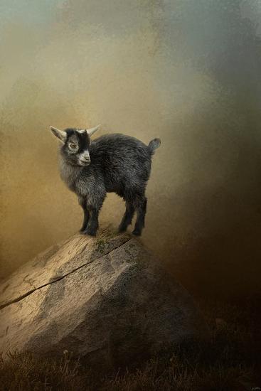 Little Rock Climber-Jai Johnson-Giclee Print