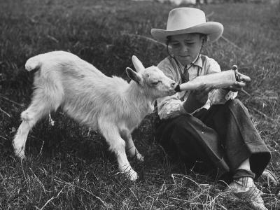 Little White Goat Being Fed from Bottle by Little Boy, at White Horse Ranch-William C^ Shrout-Photographic Print