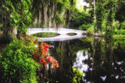 Little White Plantation Bridge-George Oze-Photographic Print