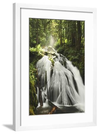 Little Zig Zag Falls, Welches, Oregon, USA-Michel Hersen-Framed Photographic Print