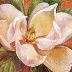 Magnolia Glow I by Liv Carson