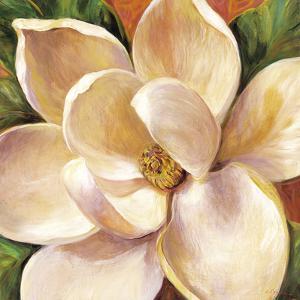 Magnolia Glow II by Liv Carson