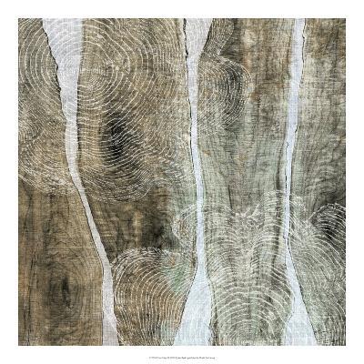 Live Edge IV-John Butler-Giclee Print