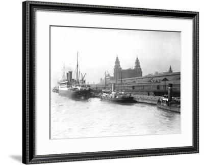 Liver Building--Framed Photographic Print