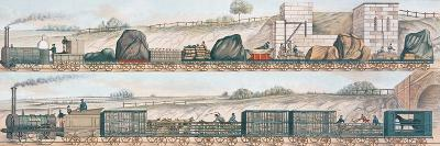 Liverpool and Manchester Railway: Freight and Livestock--Giclee Print