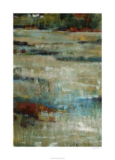 Living Color I-Tim O'toole-Limited Edition