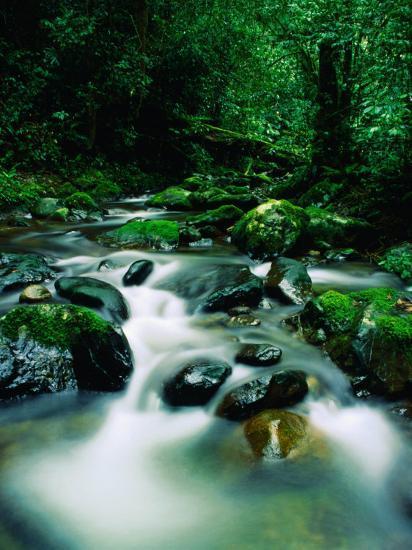 Liwagu River at Kinabalu National Park, Sabah, Malaysia-Mark Daffey-Photographic Print