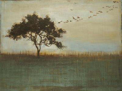 A Fleeting Glimpse by Liz Jardine