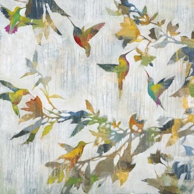 Aerial Dance by Liz Jardine
