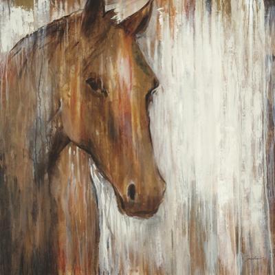 Painted Pony by Liz Jardine