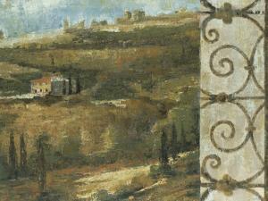 Tuscan Gateway II by Liz Jardine