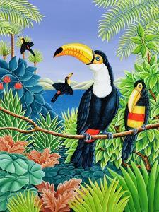 Toucans, 1993 by Liz Wright