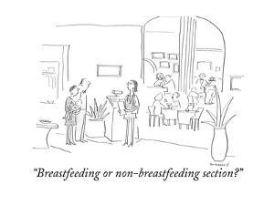 """""""Breastfeeding or non-breastfeeding section?"""" - Cartoon by Liza Donnelly"""