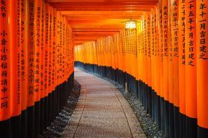 Torii Gates in Fushimi Inari Shrine, Kyoto, Japan by lkunl