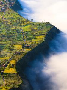 Village near Cliff at Bromo Volcano in Tengger Semeru National Park, Java, Indonesia by lkunl