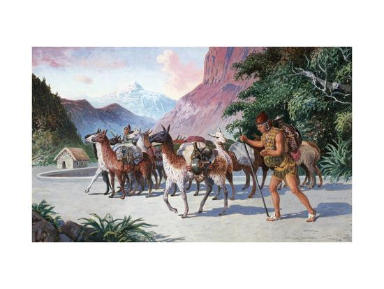 Llama Herders Drive their Pack, Loaded with Fine Textiles and Pottery-H.M. Herget-Giclee Print