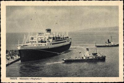 Lloyd Triestino, Dampfer Neptunia, Motonave--Giclee Print