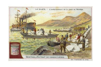 Loading Ice onto a Ship; Norway--Giclee Print
