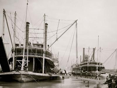 Loading Steamer During High Water, March 23, 1903, New Orleans, LA--Photo