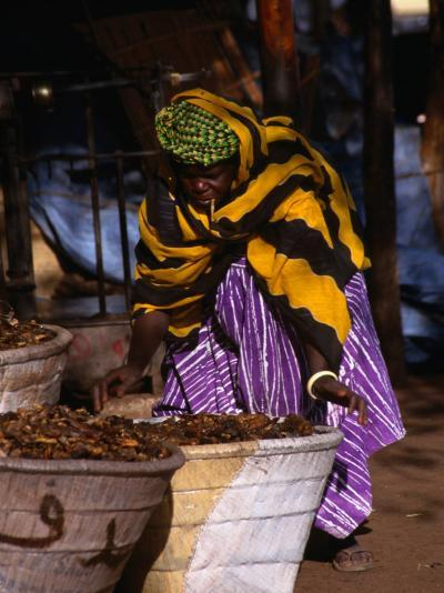 Local Woman Setting Up to Sell Dried Fish in Mopti Harbour, Mopti, Mali-Patrick Syder-Photographic Print