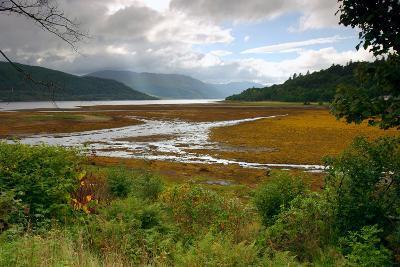 Loch Sunart from Strontian, Highland, Scotland-Peter Thompson-Photographic Print
