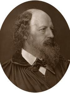 Alfred Tennyson, Dcl, Frs, English Poet Laureate, 1883 by Lock & Whitfield