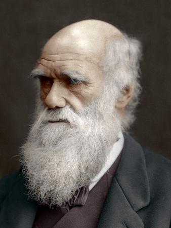 Charles Darwin, British Naturalist, 1878