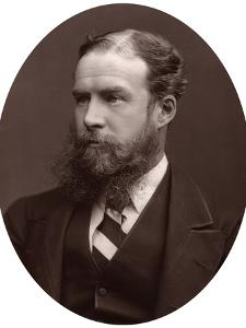 Sir John Lubbock, Bart, MP, FRS, Vice-Chancellor of the University of London, 1877 by Lock & Whitfield