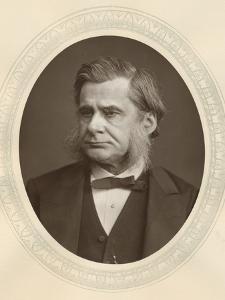 Thomas, Henry Huxley, English Biologist, 1877 by Lock & Whitfield