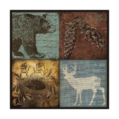 Lodge 4 Patch III-Stephanie Marrott-Giclee Print