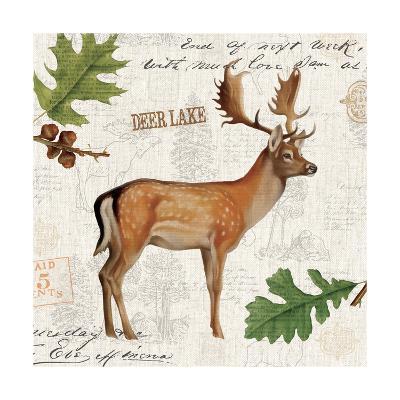 Lodge Collage VII-Katie Pertiet-Art Print
