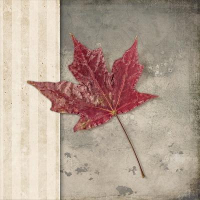 https://imgc.artprintimages.com/img/print/lodge-leaf-1_u-l-q12v34q0.jpg?p=0
