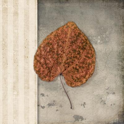 Lodge Leaf 2-LightBoxJournal-Giclee Print