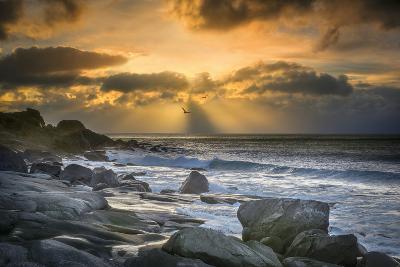 Lofoten Beach and Stones-Marco Carmassi-Photographic Print