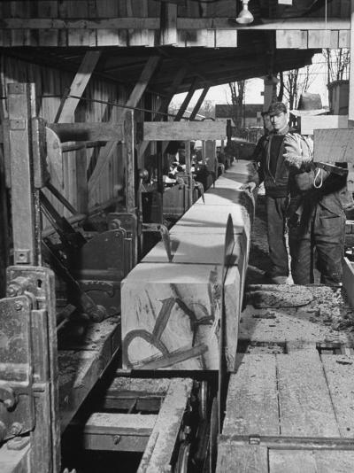 Log Being Sawed into Planks of Lumber for Use in Construction of Ships--Photographic Print