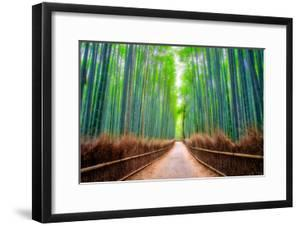 A path winds through an ancient bamboo forest in Kyoto, Japan, Asia by Logan Brown