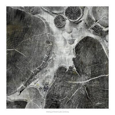 Logging I-John Butler-Art Print