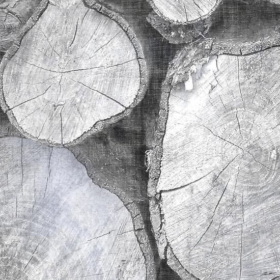 Logging Light II-John Butler-Photographic Print