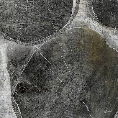 Logging V-John Butler-Photographic Print