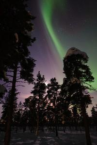 Northern Lights in Jukkasjarvi, Sweden by Lola Akinmade Akerstrom