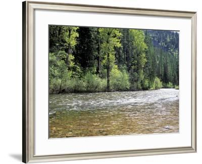 Lolo Creek on Lewis and Clark's Trail over the Bitterroot Mountains in Montana--Framed Photographic Print