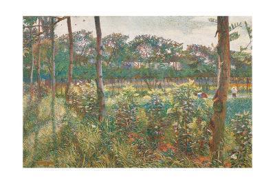 Lombard Countryside, 1908-Umberto Boccioni-Giclee Print