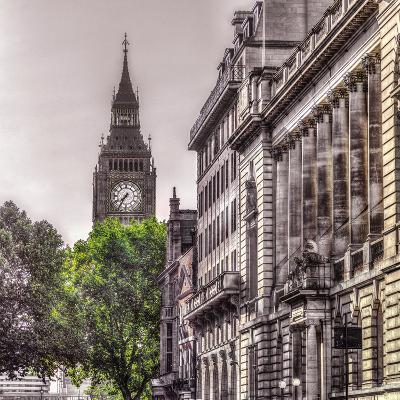 London Tree-Assaf Frank-Giclee Print