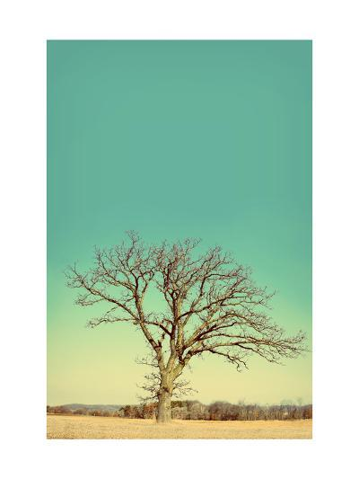 Lone Bare Branched Winter Tree in the Country-Christin Lola-Art Print
