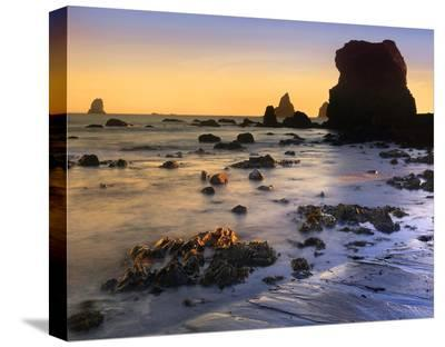 Lone Beach at sunset, Oregon-Tim Fitzharris-Stretched Canvas Print