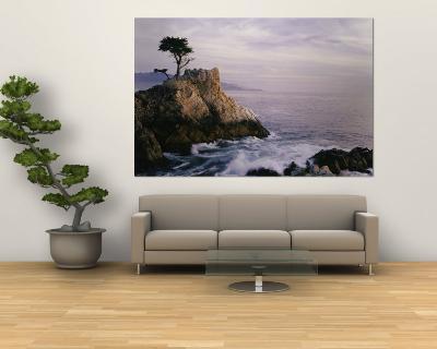 Lone Cypress Tree on a Rocky Point Near Pebble Beach-Mark Cosslett-Wall Mural