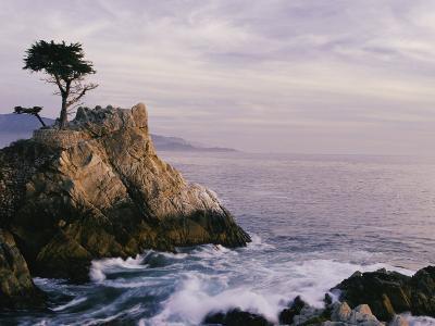 Lone Cypress Tree on a Rocky Point Near Pebble Beach-Mark Cosslett-Photographic Print