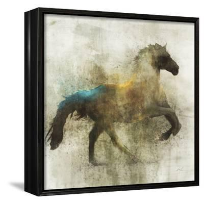 Lone Star 3-Ken Roko-Framed Canvas Print