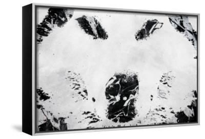 Lone Wolves-Alex Cherry-Framed Canvas Print