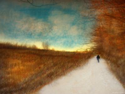 Lonely Autumn Path-Robert Cattan-Photographic Print